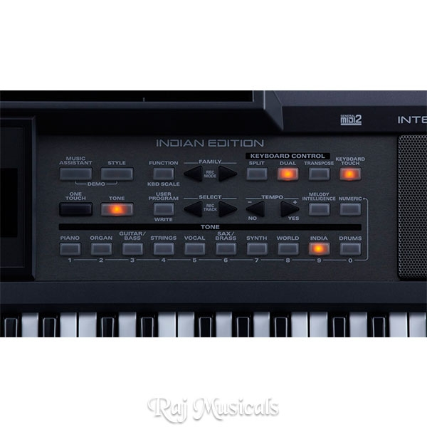 Roland E-09 IN Interactive Arranger Keyboard With Indian Soul