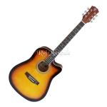 Techno DM-41 Acoustic Guitar