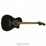 Fender Newporter Special Acoustic Guitar With Gig Bag