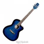 Ashton D10C 39-Inch Cutaway Acoustic Guitar - Transparent Blue Burst Gloss