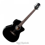 Ashton D10C 39-Inch Cutaway Acoustic Guitar - Black Gloss